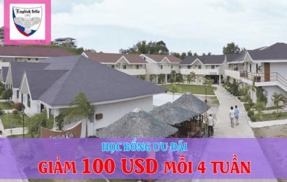 Trường Fella: học bổng ưu đãi giảm 100 USD/ 4 tuần